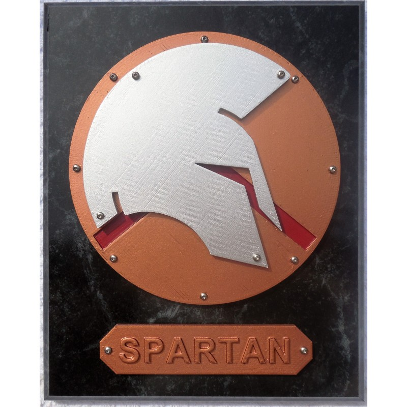 Painted Spartan Plaque (S) 8X10