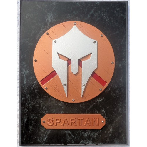Painted Spartan Plaque 9X12